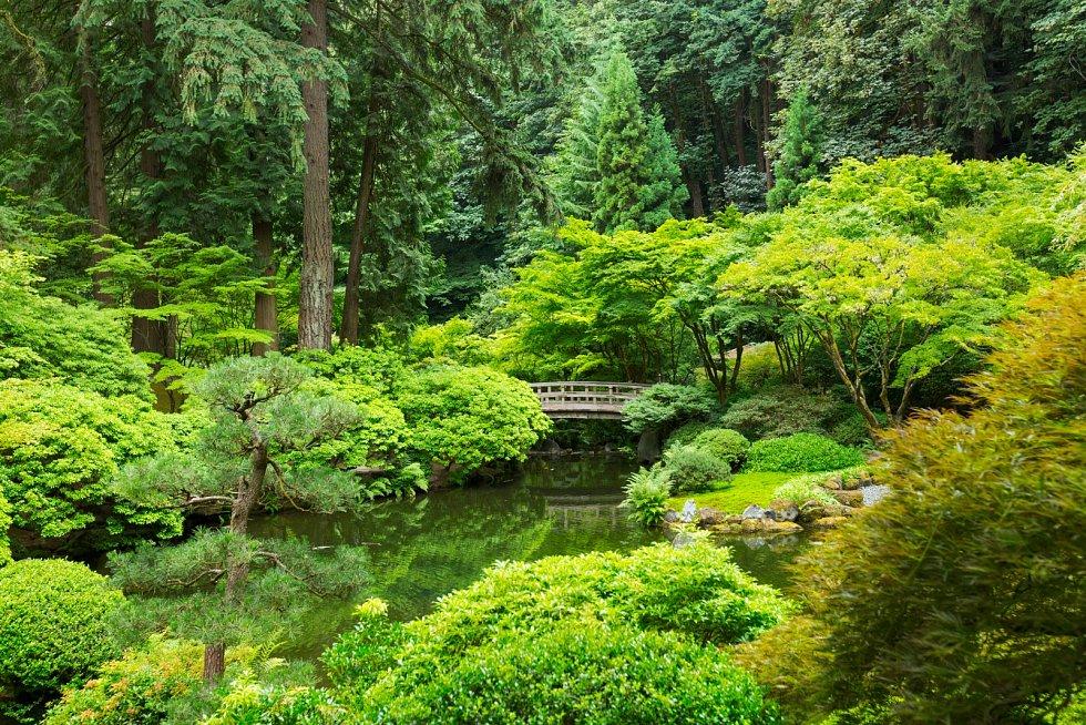 při přípravě projektu rodinného domu byste měli zároveň promýšlet, jakou podobu má mít zelený prostor, který vás bude obklopovat během mnoha dalších let.