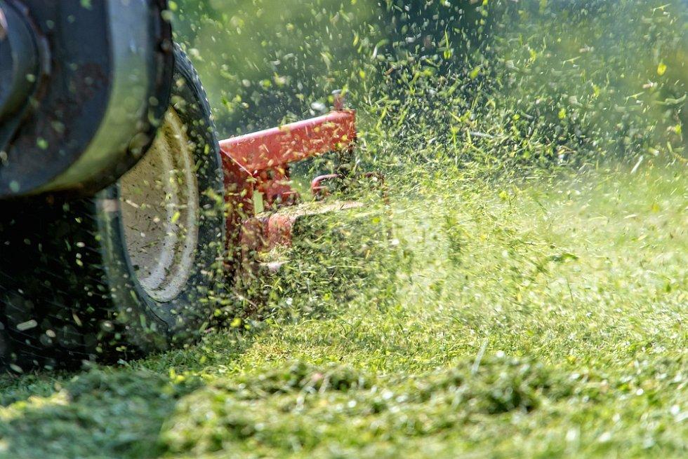 Když se vrátíte po dovolené a zjistíte, že je trávník přerostlý, správně byste ho měli posekat několikrát a s několikadenními odstupy, rozhodně ne najednou.