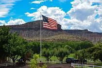 Vlajka Spojených států amerických