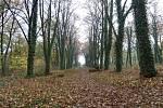Pražský hřbitov bláznů skrývá několik tajemství