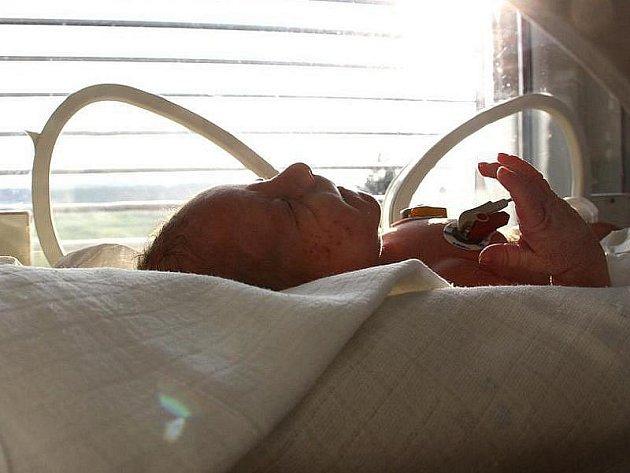 V suterénu hořovické nemocnice našla ráno uklízečka položené novorozeně. Dítě bylo pohozeno v batohu a zabaleno v dekách. Jedná se o chlapečka a je zdravý, uvedl mluvčí nemocnice Tomáš Šebek.