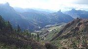 Gran Canaria. Pozůstatek lesa, přes který se před nedávnou dobou přehnal požár. Některé stromy požár přežily. Výhled na skalní monolit Roque Bentayga