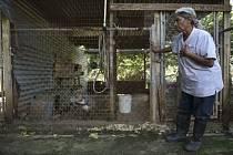Bezdomovci v Portoriku