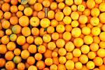 Pomeranče. Ilustrační foto