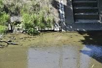Sucho - nízký stav vody - ilustrační foto