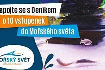 Zapojte se sDeníkem o 10 vstupenek do Mořského světa v Praze.