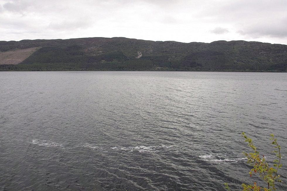 K záběrům ryby byly v počítači dodány záběry jezera