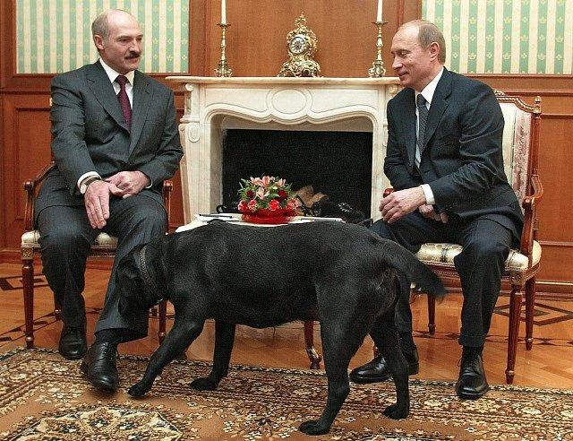 Vladimír Putin a jeho láska ke psům. Setkání s Alexandrem Lukašenkem.