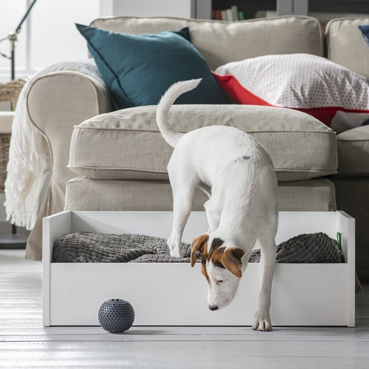 Místo klasického pelíšku možná váš mazlíček ocení vlastní postel, samozřejmě s měkoučkým polštářem.