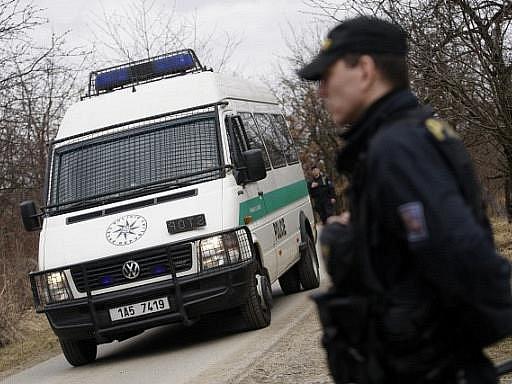 Ostatky nalezené 16. března v pražské Tróji patří s největší pravděpodobností pohřešované devítileté dívce, která se ztratila loni v říjnu, potvrdila to policejní expertiza.