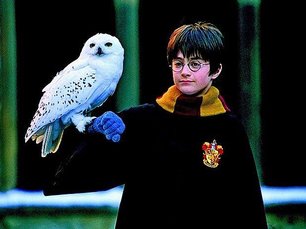 Harry Potter, současná literární modla
