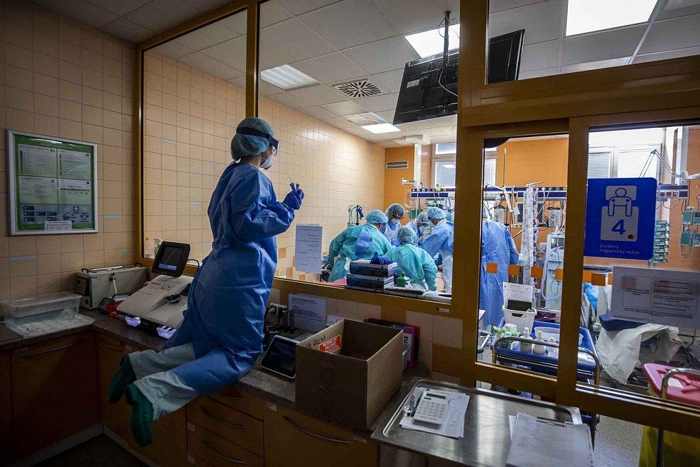 Kategorie Reportáž: JIP v době koronaviru