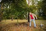 Slavný žokej a trenér Josef Váňa vysadil v pražské Botanické zahradě v Troji svůj strom.