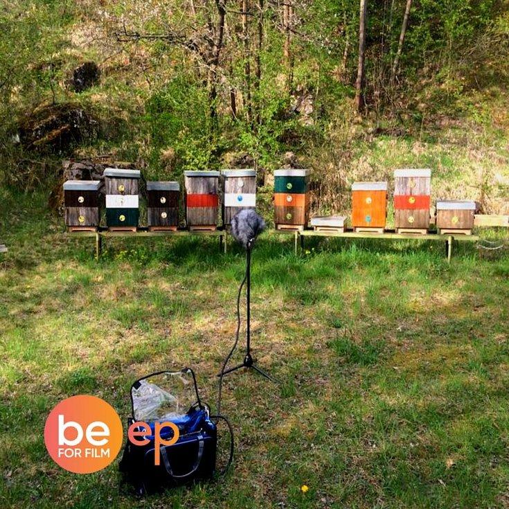 Nahrávání včelích ruchů