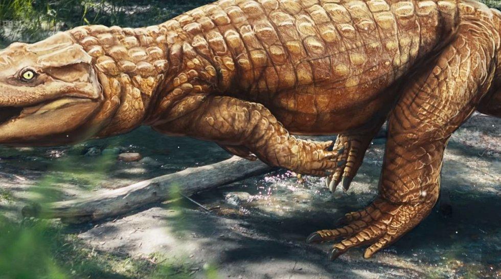 Další umělecká představa krokodýlího předka Batrachopus grandis. I ta počítá s chůzí po zadních