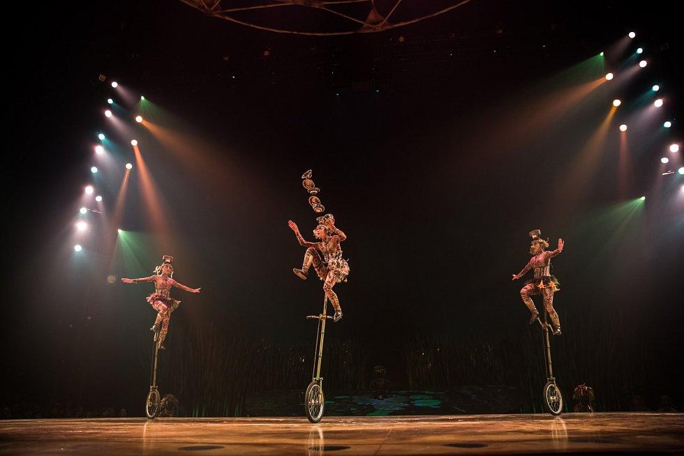 V novém cirkusu neuvidíte drezúru slonů nebo dravé zvěře, nebo alespoň ne tak, jak ji znáte z dětských let