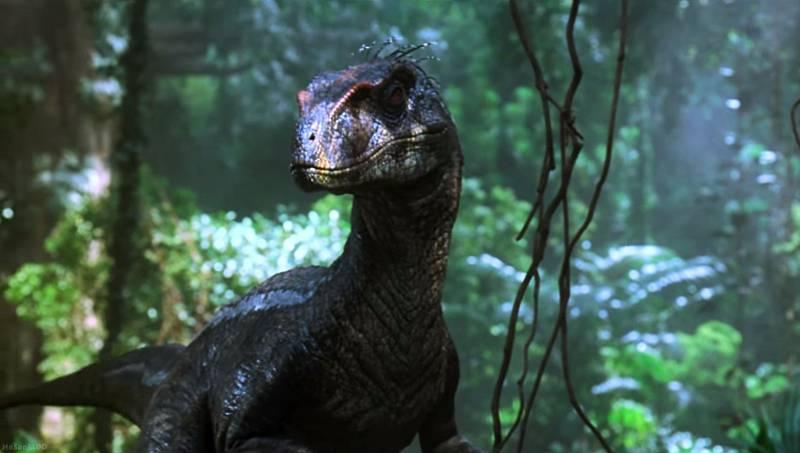 Tato schopnost podle tvůrců umožňovala raptorům svolávat se na dálku