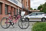 Růžová kola v Olomouci
