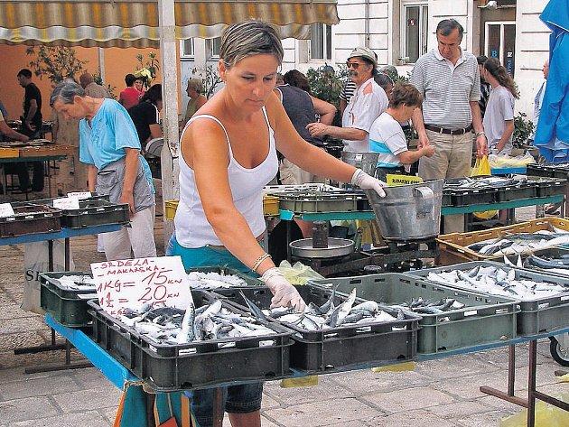 Ženy si vedou při prodeji ryb na trhu velmi dobře. Zákazníky se snaží nalákat hlasitým vykřikováním své nabídky.