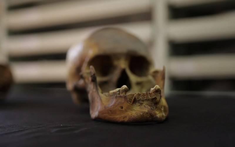 Lebka člověka z kultury Clovis