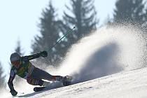 Ted Ligety ovládl obří slalom v Kranjské Goře.