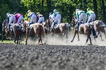 Velká cena města Pardubic (5800 m, pětiletí a starší koně) - první kvalifikace na Velkou pardubickou, 21. května v Pardubicích.