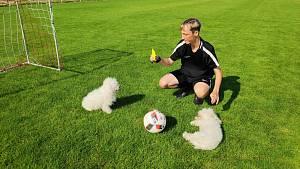 Fotbal a mazlíčci.