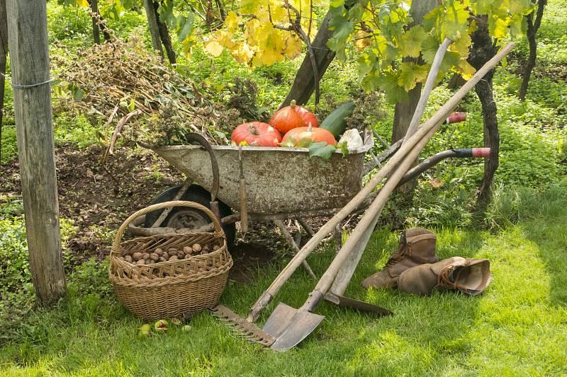 S nadcházejícím podzimem nás na zahradě čeká spousta práce.
