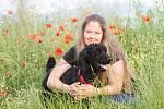 Manželé Veronika a Karel Novotní zasvětili svůj život péči o opuštěná zvířata. Na svém statku v malebné vesničce Bzová na Křivoklátsku se již dlouhé roky starají o koně, psy, kočky i další němé tváře s pohnutým osudem.