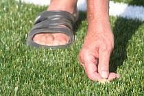 Umělý trávník. Ilustrační foto