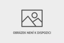Český skokan na lyžích Antonín Hájek.