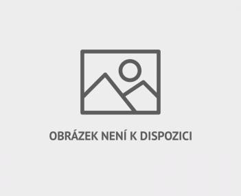 Ruskonamornictvo4denik-380