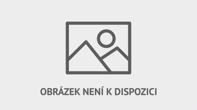 Brankář Radek Černý v akci.