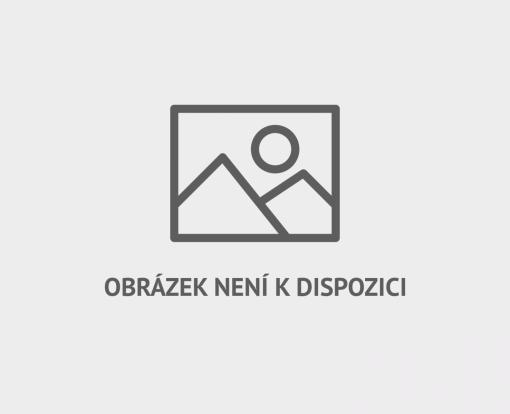 Od roku 2010 probíhá happening Hodina Země i v Česku.