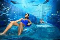 Aquaventure - akvapark, který vám vezme dech!