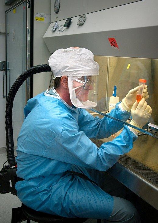 Vakcína, výzkum, testování.