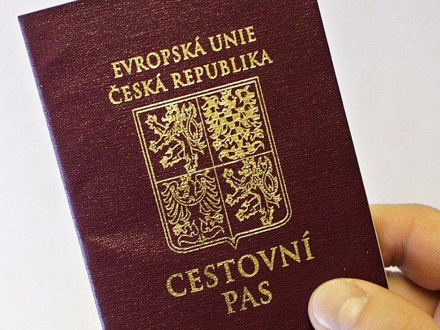 Skupina nejméně čtyř lidí padělala stovky dokladů, především cestovních pasů či povolení k pobytu. Obviněni už byli jedenačtyřicetiletý Albánec a jednašedesátiletá Češka. Padělané průkazy byly velmi kvalitní, od originálů se daly jen obtížně rozeznat.