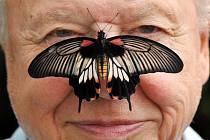 Známý britský přírodovědec a průvodce televizními pořady o přírodě David Attenborough.