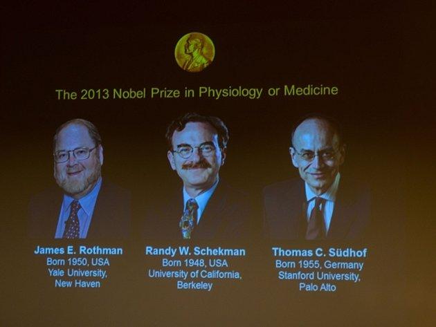 Letošní Nobelovu cenu za fyziologii a lékařství získali za objev týkající se přenosu bílkovin a jiných látek v buňkách a mezi buňkami James Rothman, Randy Schekman a Thomas Südhof.