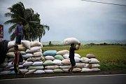 Filipínští farmáři se připravují na úder hurikánu Mangkhut