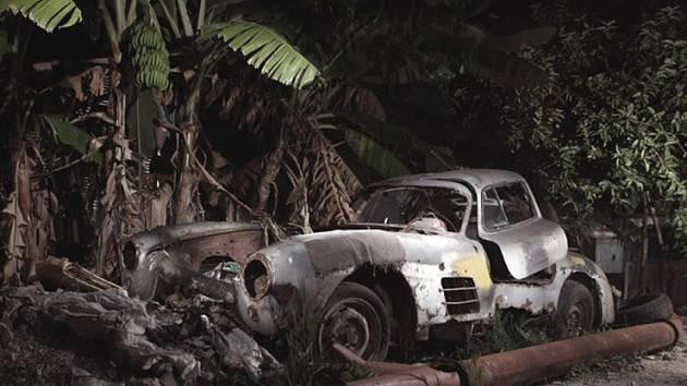 Vrak sportovního kupé Mercedes-Benz 300 SL Gullwing stál pod banánovníkem zřejmě dlouhá léta.
