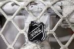 Logo NHL na síti hokejové branky.