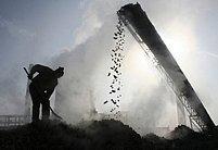 Problém ilegální těžby z malých dolů ukrytých hluboko v lesích přetrvává také v chudých oblastech východní Ukrajiny (Ilustrační foto)