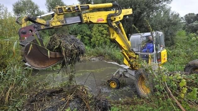 Pracovníci Povodí Moravy rozebírali 17. září pomocí kráčejícího rypadla bobří hráz na Bratrušovském potoku u čističky odpadních vod na okraji Šumperka. Bobří hráz, která měla výšku asi 160 centimetrů, snížili vodohospodáři o polovinu.