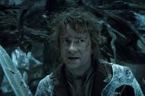 Hobit: Šmakova dračí poušť líčí další dobrodružství hobita Bilbo Pytlíka na jeho společné pouti s čarodějem Gandalfem a třinácti trpaslíky vedenými Thorinem Pavézou. Vydali se na výpravnou cestu, jejímž cílem je získat zpět Osamělou horu.