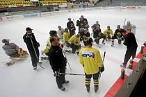 Hokejisté Litvínova zahájili 25. července pod vedením trenéra Radima Rulíka přípravu na novou sezonu.