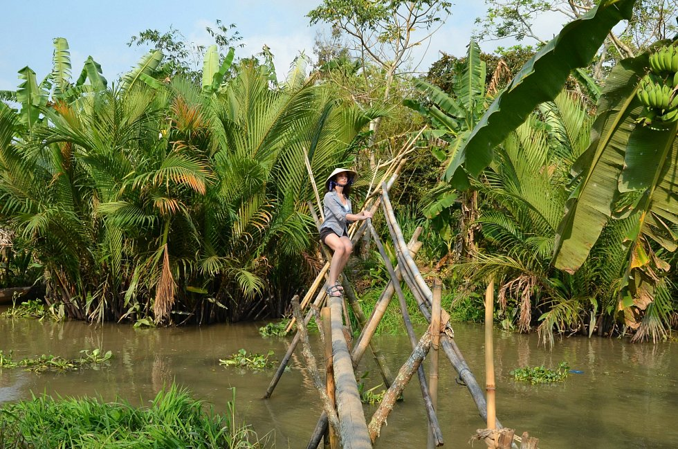 Jeden z opičích mostů ve Vietnamu