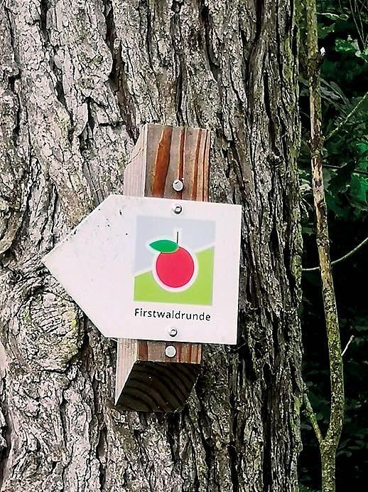 Naše značení má jednotnou metodiku, německé je docela zábavné avRakousku aŠvýcarsku se používá jen červená značka.
