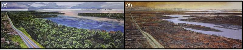 Povodí Amazonky v současnosti a v roce 2500. Tedy v případě, že se lidstvu nepodaří zpomalit globální oteplování. Ilustrace je součástí vědecké studie, publikované v časopisu Global Change Biology.