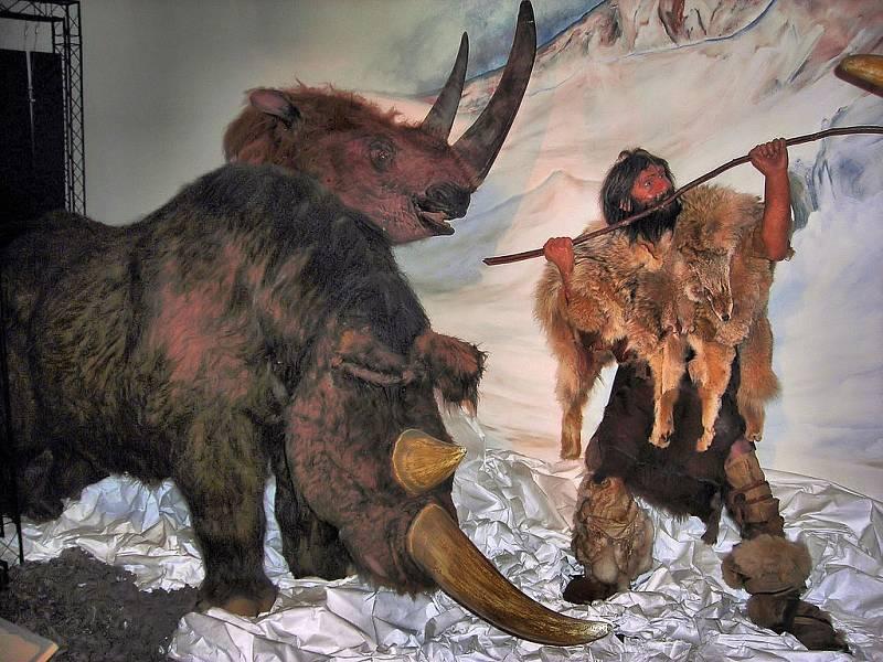 Rekonstrukce souboje pravěkého lovce se srstnatým nosorožcem z londýnského antropologického Horniman Muzea